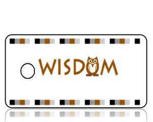 Create Design Key Tags Wisdom Owl Earth Tones