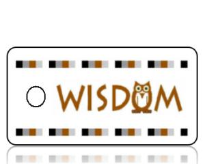 Wisdom Owl Earth Tones