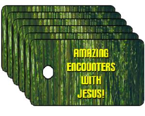 Vacation Bible School Encounters With Jesus