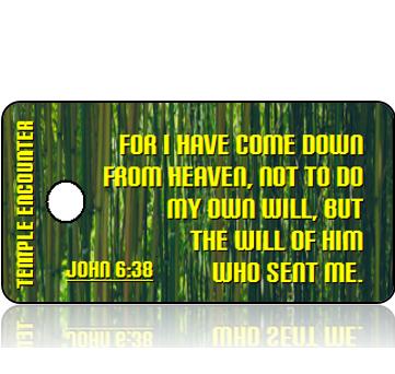 ScriptureTagPackVBS-Encounters with Jesus-TempleEncounter