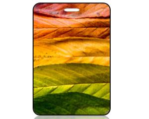 Create Design Bag Tag Fall Autumn Leaves